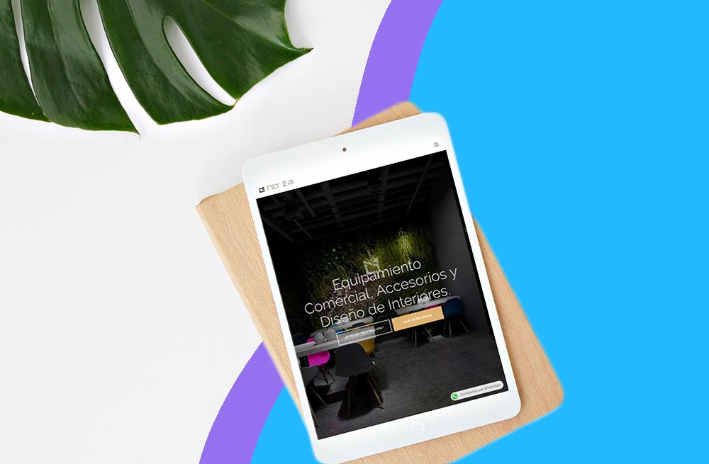Proyecto diseno desarrollo web tablet